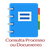 consulta_proc_doc_icone.png